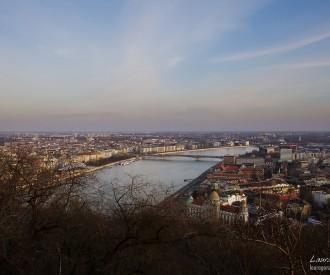 2012-03-04 Danubio 3