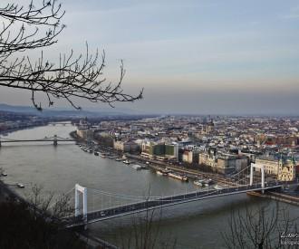 2012-03-04 Danubio 4-Editar