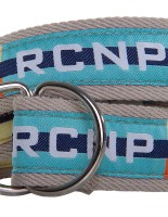Colors belt RCNP